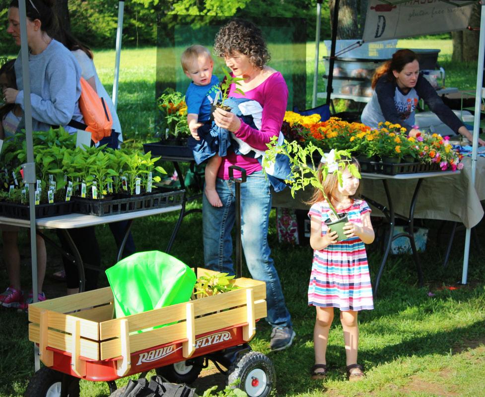 South Madison Farmers Market Has New >> Madison City Farmers Market Home